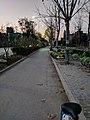 Night View on Funan Yongquan Road.jpg
