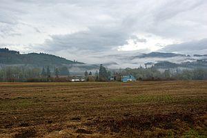 Northern Oregon Coast Range - Fog covering the mountains near Balm Grove