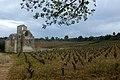 Notre-Dame-des-Oubiels + vignes 1.jpg