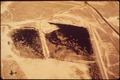 OIL WAST ON DESERT - NARA - 542530.tif
