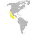Oceanodroma socorroensis dist.png
