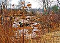 Ohio Valley Mushroom Farm, Acid-Mine Drainage (AMD) (13670972663).jpg