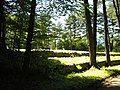 Old Fomer (West Part) cemetary - panoramio.jpg