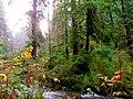 Oregon Coast (8238637244).jpg