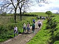 Out for a country walk, Errigle - geograph.org.uk - 1298143.jpg