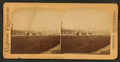 Over horticulture grounds, World's Fair, from Robert N. Dennis collection of stereoscopic views.png