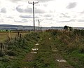 Overgrowing farm track - geograph.org.uk - 990703.jpg