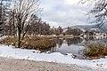 Pörtschach Halbinselpromenade Blick in die Ostbucht mit Weide und Erle 14122019 7725.jpg