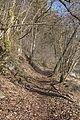 PR Bily kriz brezen 2014 13.jpg