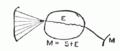 PSM V51 D665 Nerve nucleus stimuli from external source.png