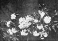 PSM V63 D255 Mountain laurel kalmia latifolia.png