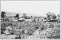 PSM V80 D313 Scene at the desert laboratory.png