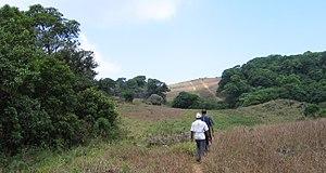 Pakshi Pathalam - Trekking at Pakshipathalam