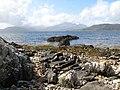 Palaeogene dyke - geograph.org.uk - 901088.jpg