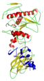 Pancreatic lipase–colipase complex with inhibitor 1LPB.png