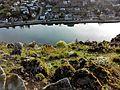 Panorama de la vallée de la Meuse, Dave, Belgique (iv).jpg