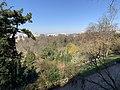 Parc Buttes Chaumont vu depuis Rue Botzaris - Paris XIX (FR75) - 2021-03-06 - 4.jpg