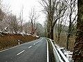 Parc Hosingen, N10 Marnach-Dasbourg (101).jpg