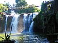 Paronella Waterfall - Flickr - GregTheBusker.jpg