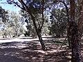 Parque del rio6.jpg