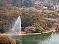 Parque do Ibirapuera com Itaim ao fundo.jpg