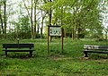Part of Rushley Green wood - geograph.org.uk - 420056.jpg