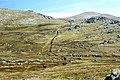 Path to Mt Kosciuszko 3.jpg