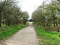 Path up to the castle - geograph.org.uk - 480350.jpg