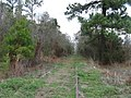 Pearl River Valley Railroad - panoramio.jpg