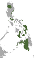 Philippine Dawn Bat area.png
