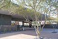 Phoenix Art Museum-2.jpg