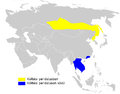 Phylloscopus schwarzi distribution map.png
