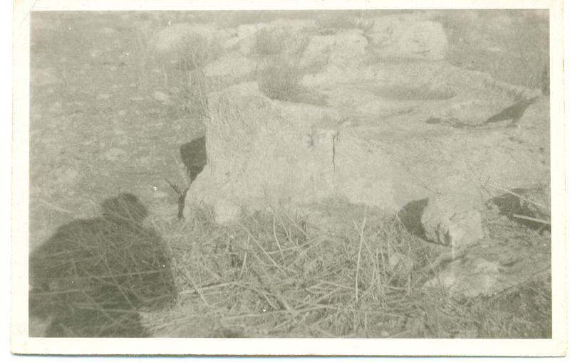 אבן מפרכה