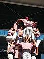 Plaça de Braus de Tarragona - Concurs 2012 P1410391.jpg