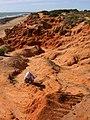 Playas de Sancti Petri - panoramio.jpg