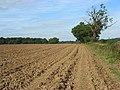 Ploughed land near Frieth - geograph.org.uk - 977040.jpg