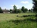 Poland. Sierpc. Open air museum, (Skansen) 063.jpg