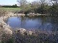 Pond at Rookery Farm - geograph.org.uk - 983407.jpg