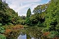 Pond at Tatton Park 3.jpg
