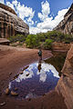 Pool in the canyon (9472110405).jpg