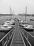 Port de Cherbourg.jpg