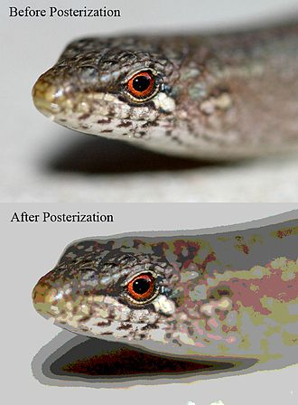 Posterization - Example of a photograph in JPEG format (24-bit color or 16.7 million colors) before posterization, contrasting the result of saving to GIF format (256 colors). Posterization occurs across the image, but is most obvious in areas of subtle variation in tone.