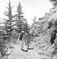 Prime Minister Jawaharlal Nehru and Countess Mountbatten strolling during their holiday in Simla in May 1948.jpg