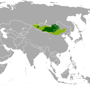 Mongolian gazelle - Historical (light green) and present range (dark green)