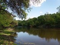 Psilskyi Landscape Reserve (05.05.19) 13.jpg