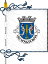 Flag of Vila Nova de Paiva