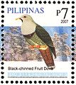 Ptilinopus leclancheri 2007 stamp of the Philippines.jpg