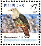 Ptilinopus leclancheri 2007 stamp of the Philippines.jpg