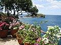 Punta Fuego View - panoramio.jpg