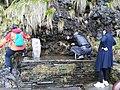 Pure Heart Pool, Mount Fanjing, 31 March 2020b.jpg